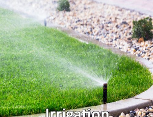 The Benefits of Installing a Lawn Sprinkler System