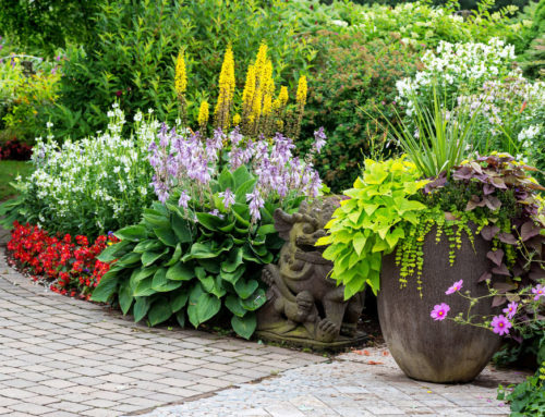 Container Gardens Make Properties More Attractive