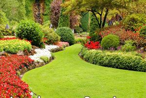 Floral Gardens Archives Pugh S Earthworks