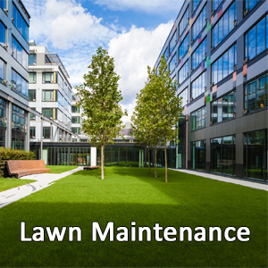 Monthly Service Programs For Commercial Landscapes and Lawns