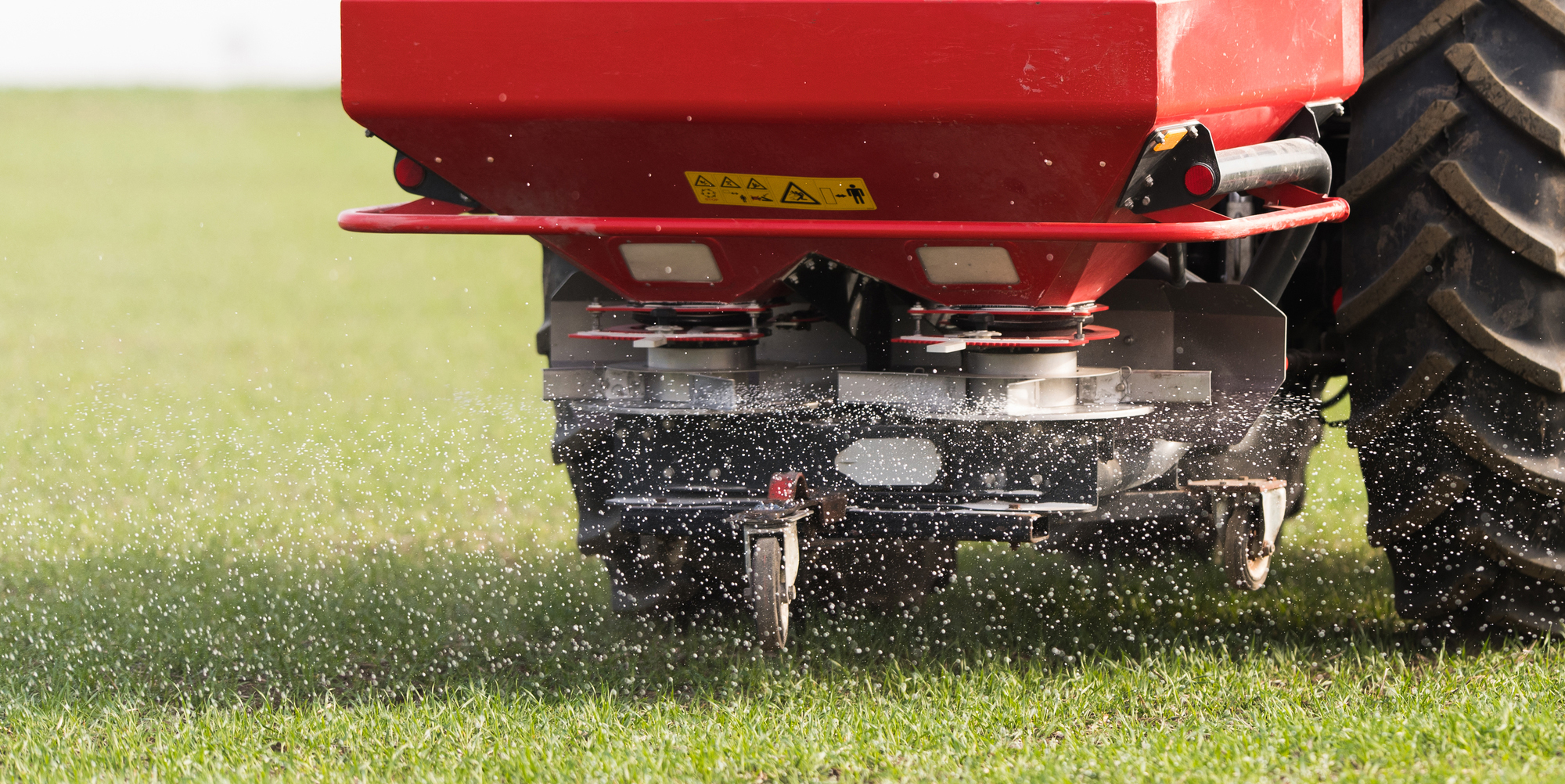Autumn is the Time to Fix Bare Spots in Your Lawn