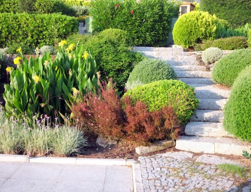 Pugh's Earthworks has the expertise to landscape any type of terrain.
