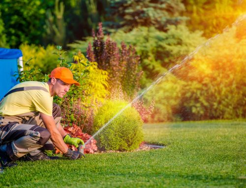 Lawns need to be watered regularly in Summer and the experts at Pugh's Earthworks will help you analyze the process