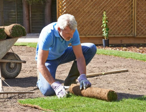 The certified professionals at Pugh's Earthworks can assist when sometimes sod replacement is best