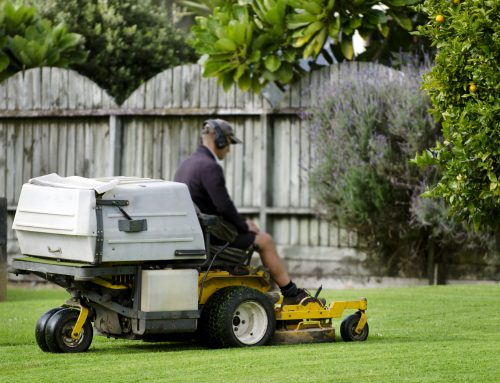 Let Pugh's Earthworks provide lawn maintenance this hot summer