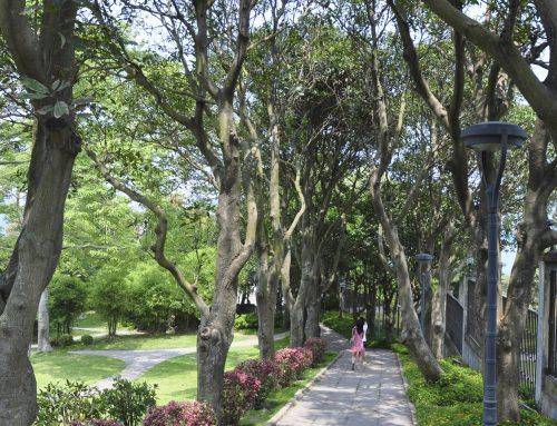 Enjoy peaceful pathways professionally landscaped by Pugh's Earthworks