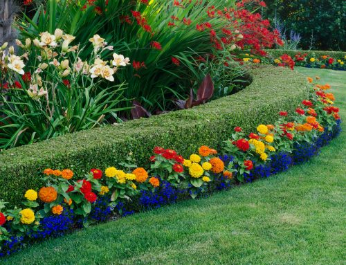 Pugh's Earthworks knows what it takes to be a best in class landscaping design firm.