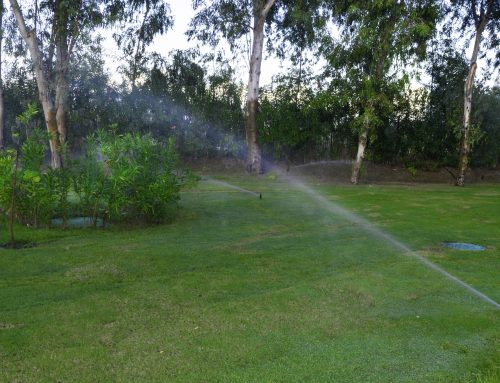 Pugh's Earthworks does its part for water conservation.