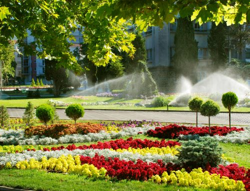 Pugh's Earthworks knows that proper Summer watering is critical for the health of Commercial Landscapes