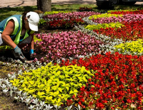 Pugh's Earthworks is the trusted and certified Commercial Landscape Company you should hire