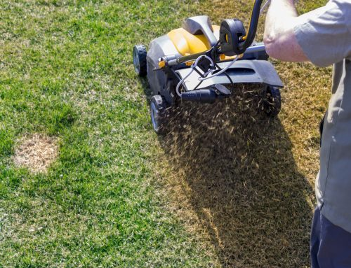 Pugh's Earthworks addresses each and every process for keeping lawns healthy including Aeration