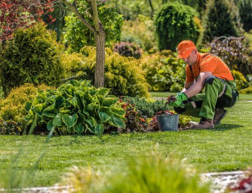 Adjust your landscape appearance for the season with the help of the experts at Pugh's Earthworks