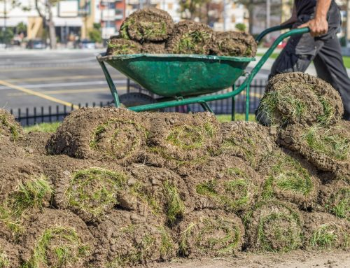 Sometimes Fall is a great time to apply new Sod to your commercial lawn and the experts at Pugh's Earthworks will know